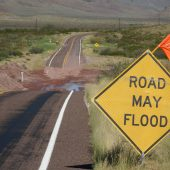 Late Filings Will Be Accepted for Ellicott City Businesses